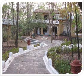 Krishna Jungle Lodge