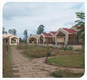Satya Ashoka Resort