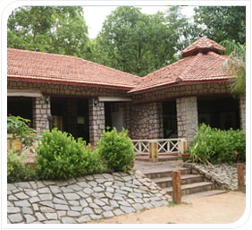 The Wild Chalet Resort Kanha